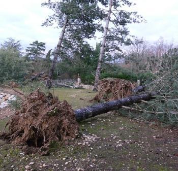 Bilan de la tempête Klauss qui a ravagé le Sud-ouest
