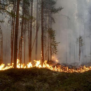 Est-il exceptionnel de voir de la chaleur dans les régions polaires?